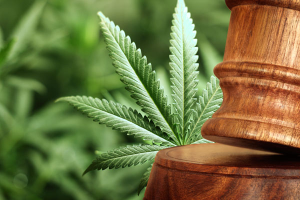Federal Drug Manufacturing Charges