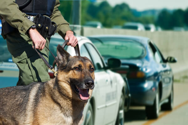 Illegal Search and Seizure, Illegal Search and Seizure Charges Austin TX, Austin TX Illegal Search and Seizure, Illegal Search and Seizure Lawyer